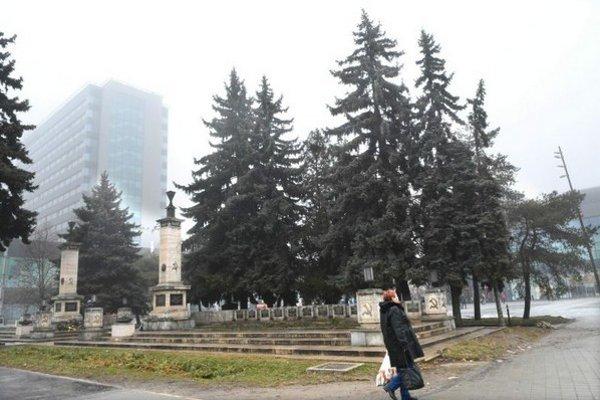 Súčasťou pamätníka už byť nemajú. Všetky ihličnaté stromy chce dať mesto odstrániť.