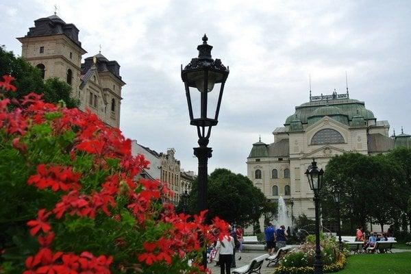 Zakvitnuté Košice. Kvetmi vyzdobené bude centrum aj ďalšie mestské časti.