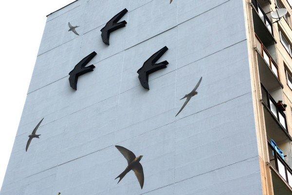 Tmavé vtáky tvoria búdky. Okolo nich poletujú fotografie dážďovníkov.