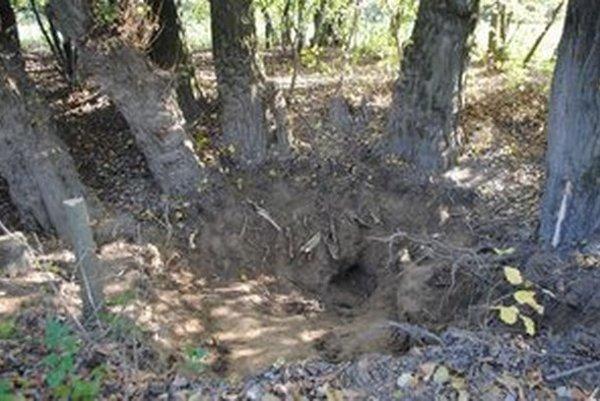 Hrob pri Krišovskej Lieskovej. Tu našli pozostatky Buvara.