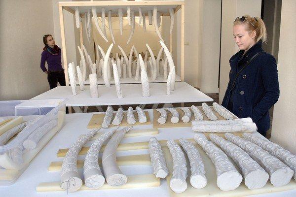 Originálne diela. U Löfflera prezentuje tvorbu Petra Feriancová.
