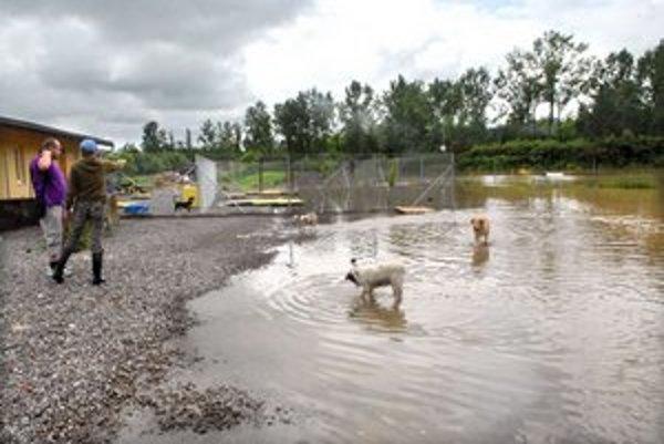 Voda spôsobila problémy aj v košickom psom útulku