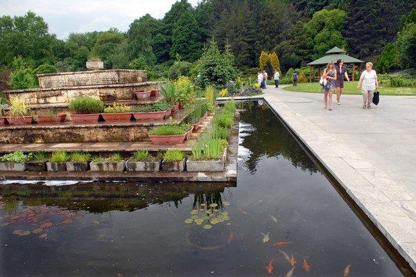 Univerzita bojuje o pozemky v botanickej záhrade.
