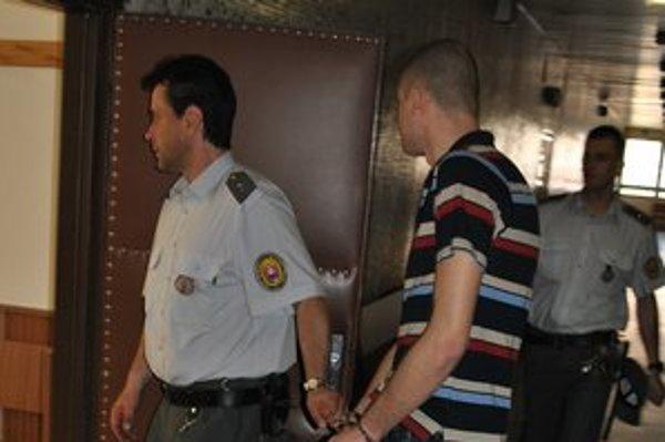 Michala uznal súd vinným v miernejšom odseku a potrestal ho 40 mesiacmi basy.