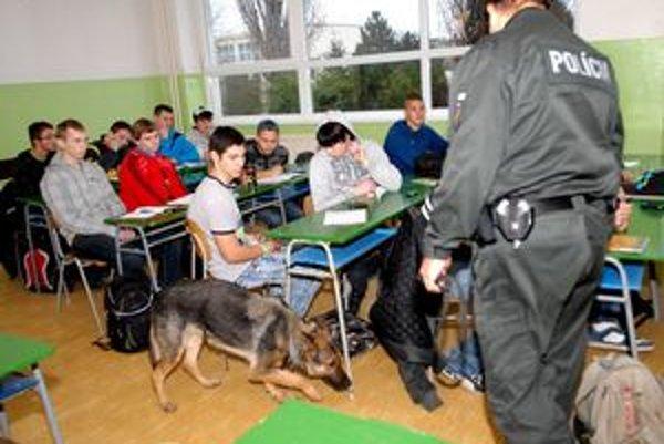 Nicol v práci. Pes oňuchával, študentom nebolo všetko jedno.