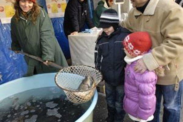 Hlavná.Z rybičiek majú asi najväčšiu radosť deti.