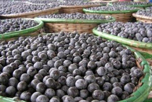 Ovocie açaí berry.