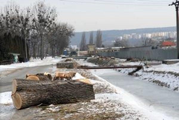 Topole sú minulosťou. Z aleje stromov zostali iba odrezané pne.