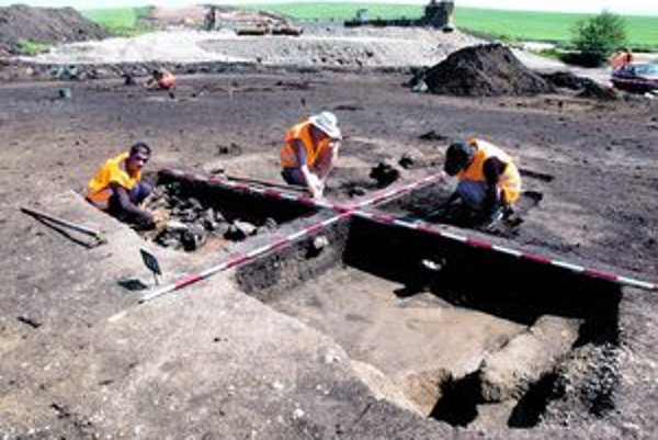Pohľad na nálezisko v Seni. Každý pracovník výskumu má pridelenú svoju parcelu, v ktorej hľadá stopy osídlenia.