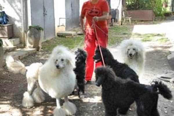 Pani Dagmar so svojimi čierno-bielymi chlpáčmi.
