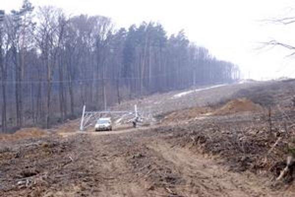 Rúbanisko. Nové stožiare elektrického vedenia potrebujú priestor aj v lesnom prostredí. Stromy musia ustúpiť.