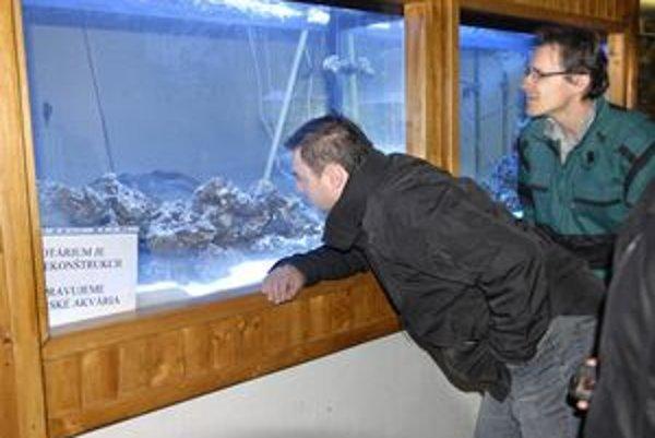 More v nádrži. Prípravy vytvorenia biotopov pre morské ryby a živočíchy boli zdĺhavé. Návštevníci uvidia morský svet už vo štvrtok.