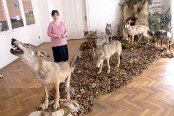 Ako živí. Múzeum stavilo na výstavu o živočíchovi, ktorý je maskotom hokejového šampionátu.