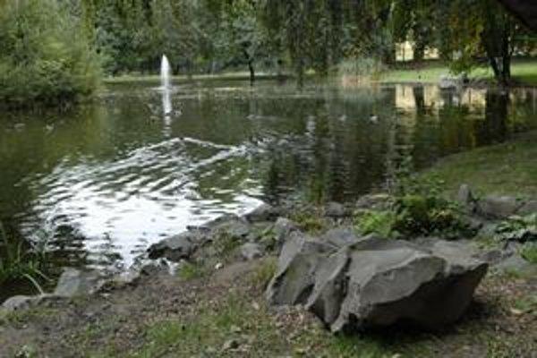 Chránený park v Barci chce mestská časť od mesta odkúpiť, aby mala viac možností na jeho zveľaďovanie.