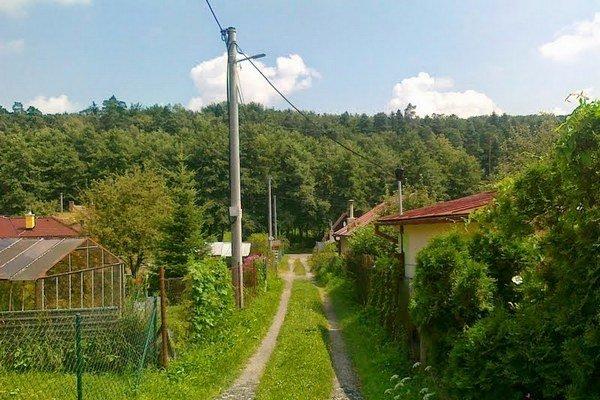 Medvedia ulica. Cestou do záhradkárskej osady sa môže medveď pohybovať aj po tejto trase.