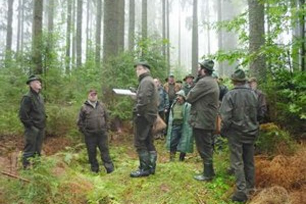 Vzdelávanie lesníkov. Určia aj terénne výučbové plochy.