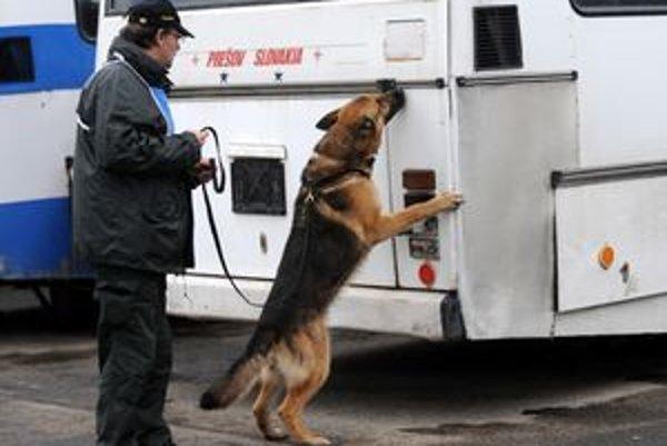 Policajný pes v akcii na prešovskej stanici.