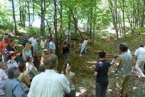 Priehradky zo smrekovcového dreva. Ich úlohou je zachytávanie a udržanie dažďovej vody v teréne.