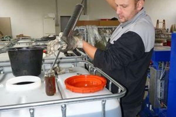 Zhodnocovanie oleja. Peter Červenický  ml. ukazuje technologický postup.