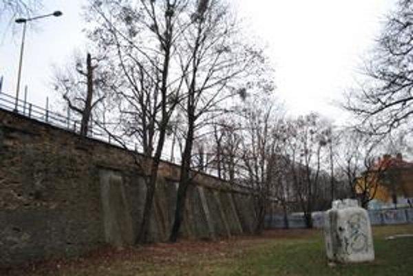 Múr nad stromoradím. Nad ním môže vyrásť Ekumenická ulička.