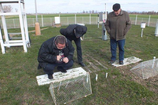 Návštevníci boli zvedaví na proces merania teploty pôdy.