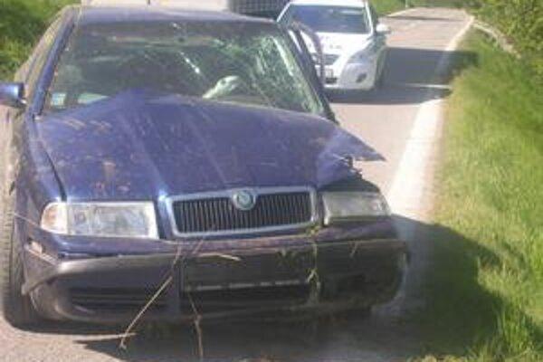 Auto. Vodič šoféroval pod parou, odniesli si to auto, strom aj zvodidlá.