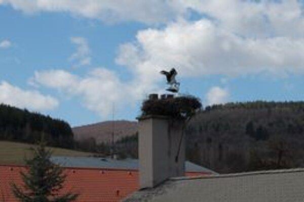 Bocianie hniezdo. Nachádza sa v areáli materskej školy.