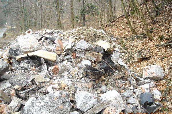 Skládka odpadu. Mníchovský potok koncom marca.