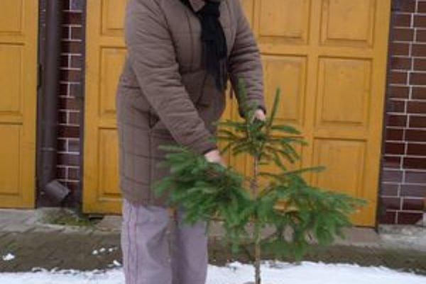 Helena Omasková z Ladomirovej. Svoj vianočný stromček má zasadený v predstihu.