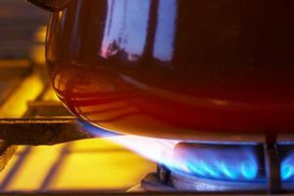 Plyn od Gazpromu budú mať niektoré firmy výhodnejšie.