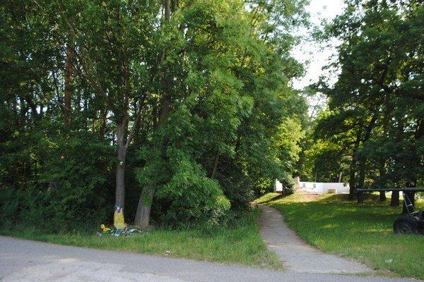 Les Biela hora. Okolo bývalého lesoparku je horúco. V Michalovciach už prebieha druhá petícia, ktorá sa zaoberá budúcou podobou lesa.