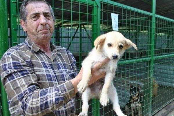 Ošetrovateľ. Juraj Mucha so šteniatkom, ktoré bolo pohodené pred bránami útulku v krabici s ďalšími piatimi šteniatkami.