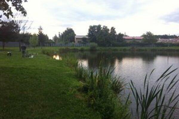 Jazierko Baňa. Je v ňom dostatok rýb a preto sa komáre nestihnú vyliahnuť.