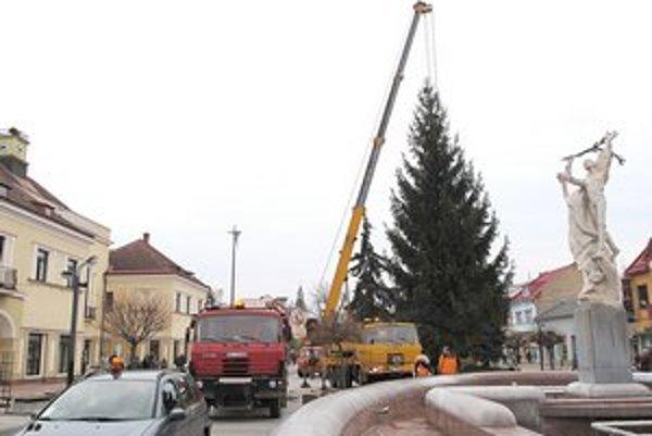 Michalovský stromček. V utorok priviezli 20-metrový smrek od obyvateľa mesta.