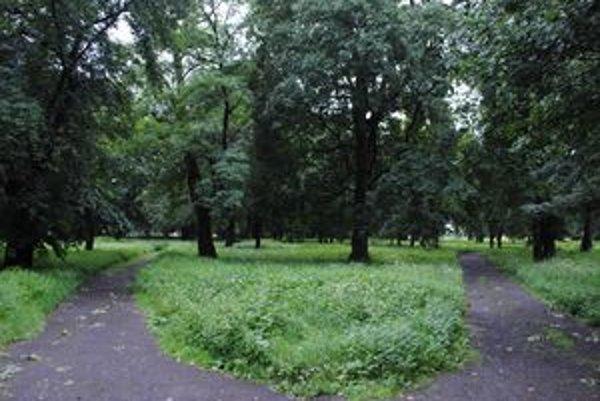 Park KERTA. Pozemky pod parkom s rozlohou vyše 34-tisíc m2 získa mesto.