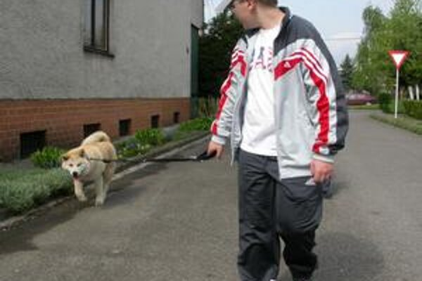 Venčenie. Psičkári musia od polovice mája venčiť psa s lopatkou, vrecúškom alebo rukavicou.