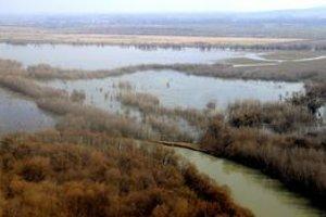 Záplavové územia na južnom Zemplíne. Voda tu takto stojí rok čo rok.