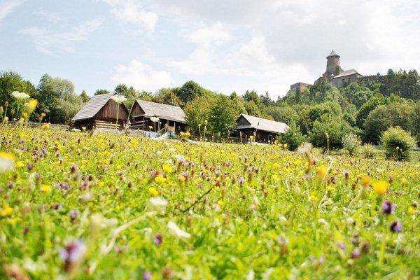 Hrad v Ľubovni. Turisti prichádzajú do mesta prevažne tu.
