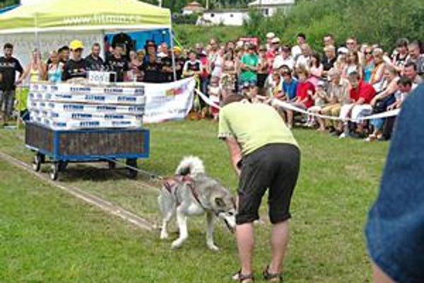 Rekordérka Jazda. Slovenský rekord si vyslúžila tým, že odtiahla viac než dve tony.