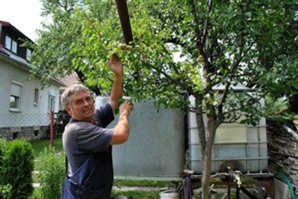 Juraj Kočan stojí pri strome plnom prekvapení.