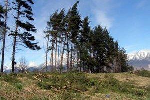 V Tatrách vietor zničil okolo 20-tisíc stromov.