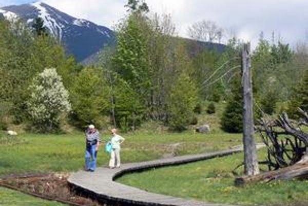 Kvitnúce Tatry. Vstup do záhrady je bezbariérový. V tomto roku vystavujú 80 druhov rastlín.