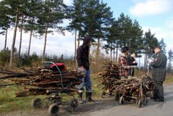 Fenomén. Štátni lesníci sú z počínania zlodejov nešťastní. Skúšajú i prevýchovné programy.