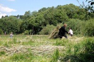 Už po piatykrát sa zišli dobrovoľníci na Šujskom rašelinisku.