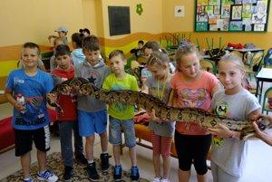 Deti sa neboja ani veľkého hada v Turčianskej Štiavničke.