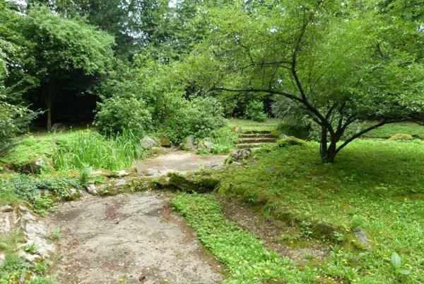 Aj vyschnuté jazierko plánuje v parku obnoviť.