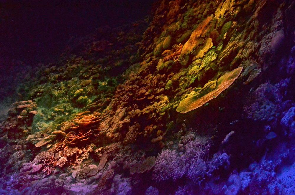 Podmorská