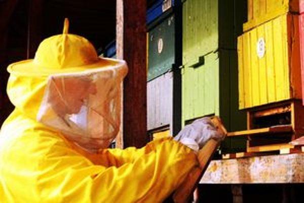 Začiatok cesty k medu - práca včelára.