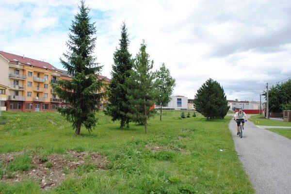 Nábrežie Hornádu. Tri dreviny (vľavo) mali byť podľa projektu tiež vyrúbané.
