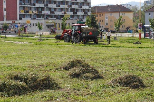 Tráva a lístie. Zelený odpad skončí vcentre.